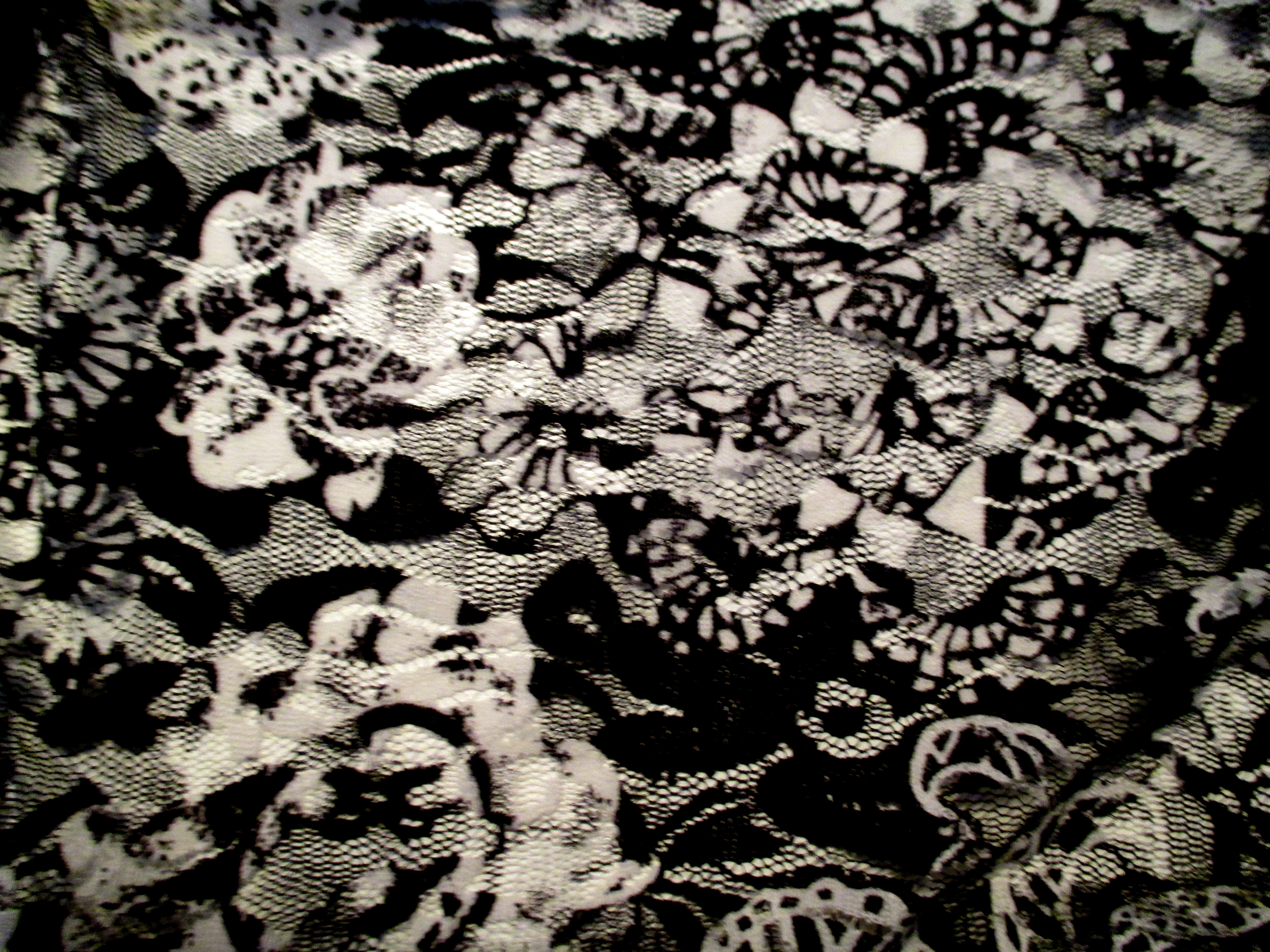 black and white rose lace